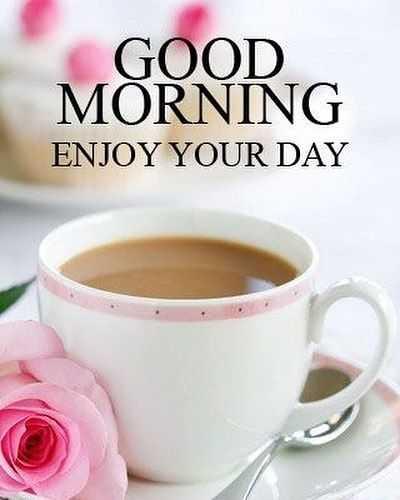 🌞সুপ্রভাত - GOOD MORNING ENJOY YOUR DAY - ShareChat