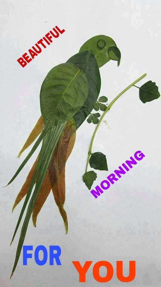 🌞সুপ্রভাত - BEAUTIFUL MORNING FOR YOU - ShareChat