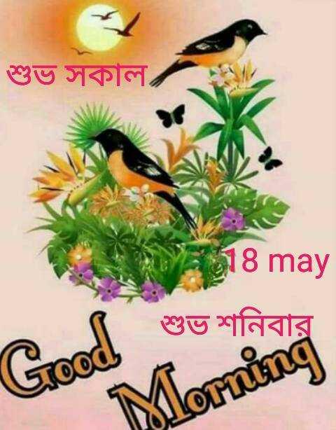 🌞সুপ্রভাত - শুভ সকাল । 18 may শুভ শনি ( Good Morning - ShareChat