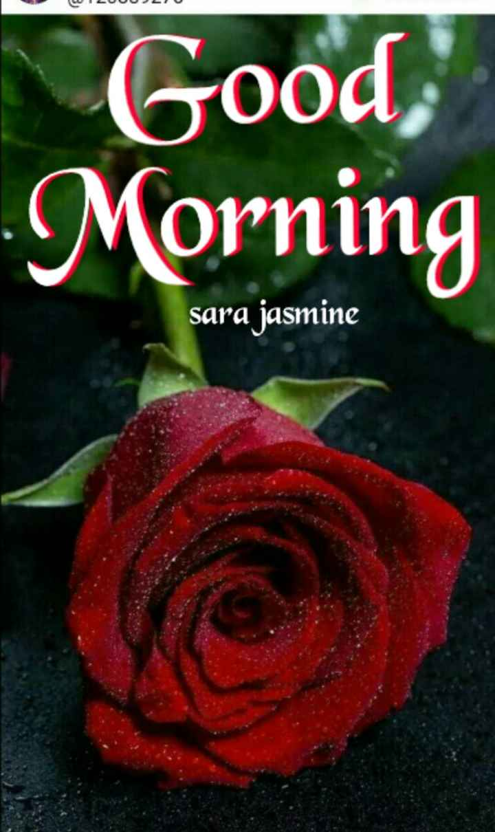 🌞সুপ্রভাত - ( CUILUUU 22 Good Morning sara jasmine - ShareChat