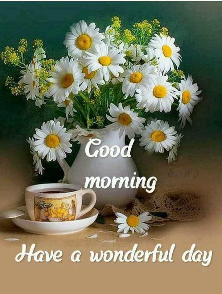 🌞সুপ্রভাত - Good morning Have a wonderful day - ShareChat