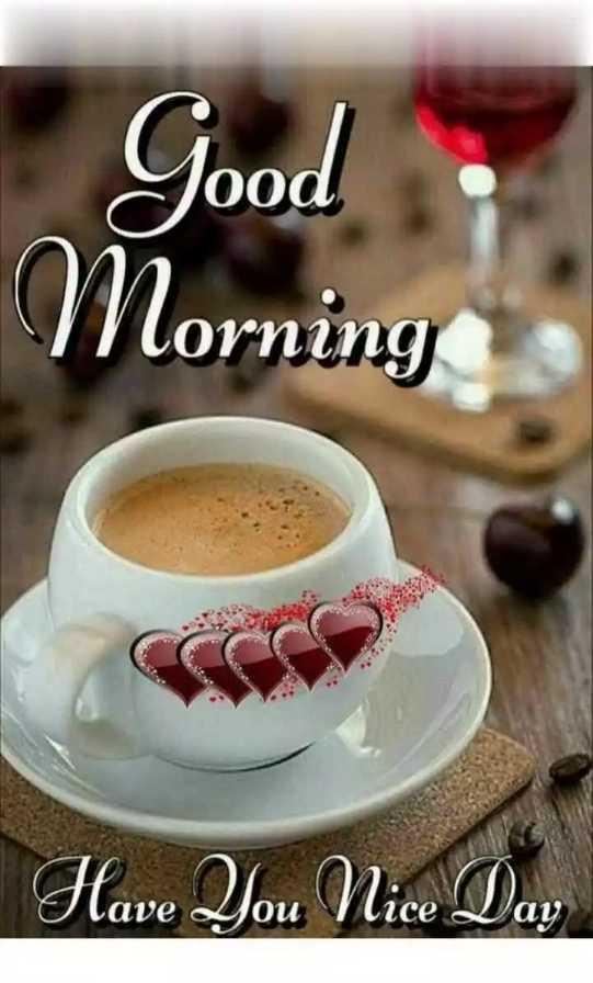 🌞সুপ্রভাত - Good Morning Have You Nice Day - ShareChat