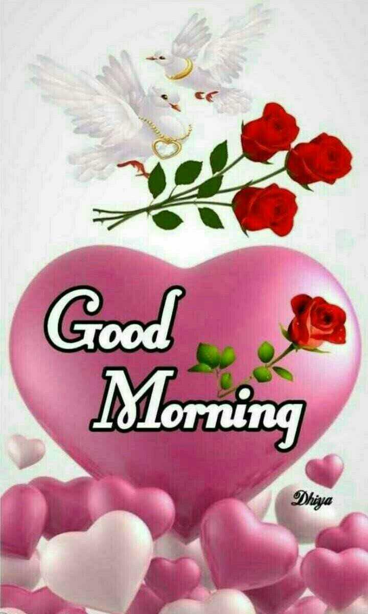 🌞সুপ্রভাত - Good Morning Dhiya - ShareChat