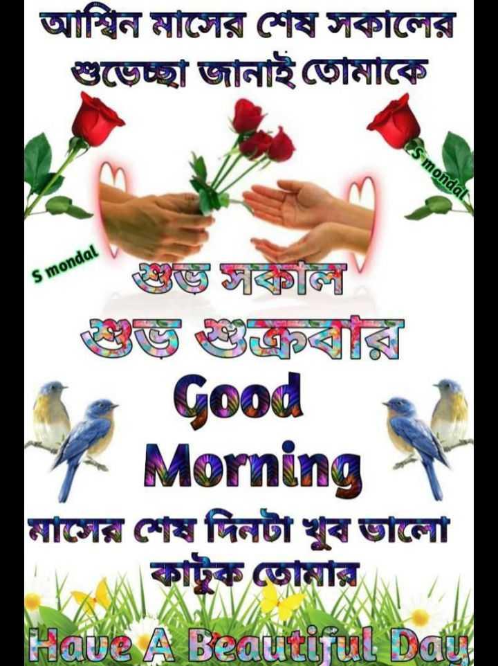🌞সুপ্রভাত - আশ্বিন মাসের শেষ সকালের শুভেচ্ছা জানাই তােমাকে S mondal S mondal হজ্জ জাকালি Good Morning মাসের শেষ দিনটা খুব ভালাে ইক তােমার Have A Beautiful Datu - ShareChat