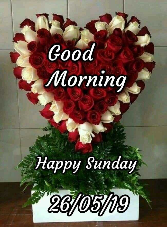 🌞সুপ্রভাত - Good Morning Happy Sunday 26 / 05 / 19 - ShareChat