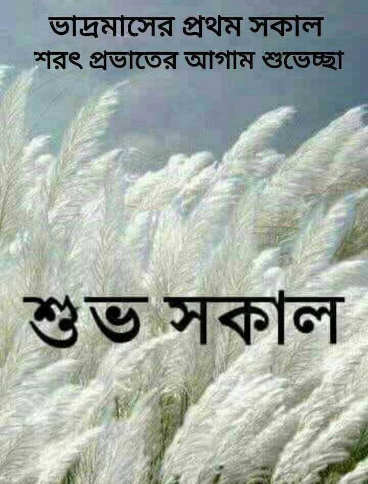 🌞সুপ্রভাত - ভাদ্রমাসের প্রথম সকাল । শরৎ প্রভাতের আগাম শুভেচ্ছা শুভ সকাল - ShareChat