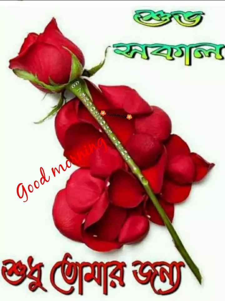 🌞সুপ্রভাত - [ ন Sushmit Good mo ning ৪ মারজন - ShareChat
