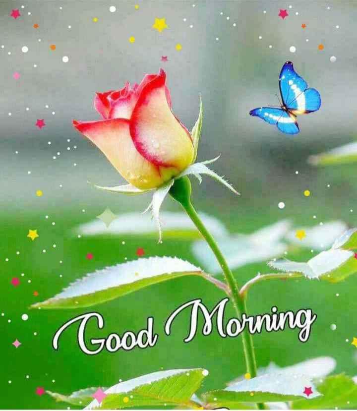 🌞সুপ্রভাত - . Good Morning - ShareChat