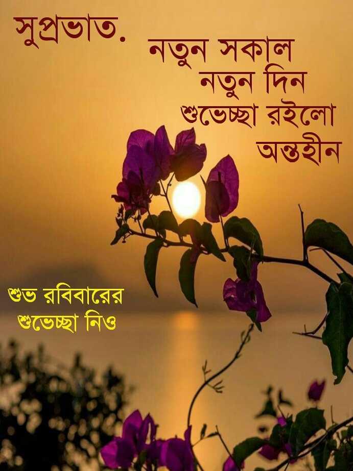 🌞সুপ্রভাত - সুপ্রভাত . নতন সকাল । নতুন দিন শুভেচ্ছা রইলাে । . অন্তহীন | শুভ রবিবারের । শুভেচ্ছা নিও - ShareChat