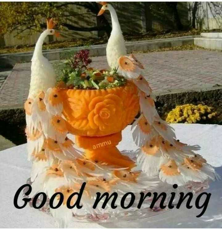 🌞সুপ্রভাত - ammu Good morning - ShareChat