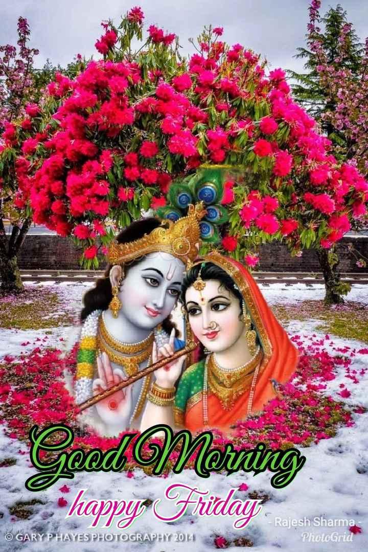 🌞সুপ্রভাত - Good Morning - happy Friday - Rajesh Sharma PhotoGrid © GARY P HAYES PHOTOGRAPHY 2014 - ShareChat