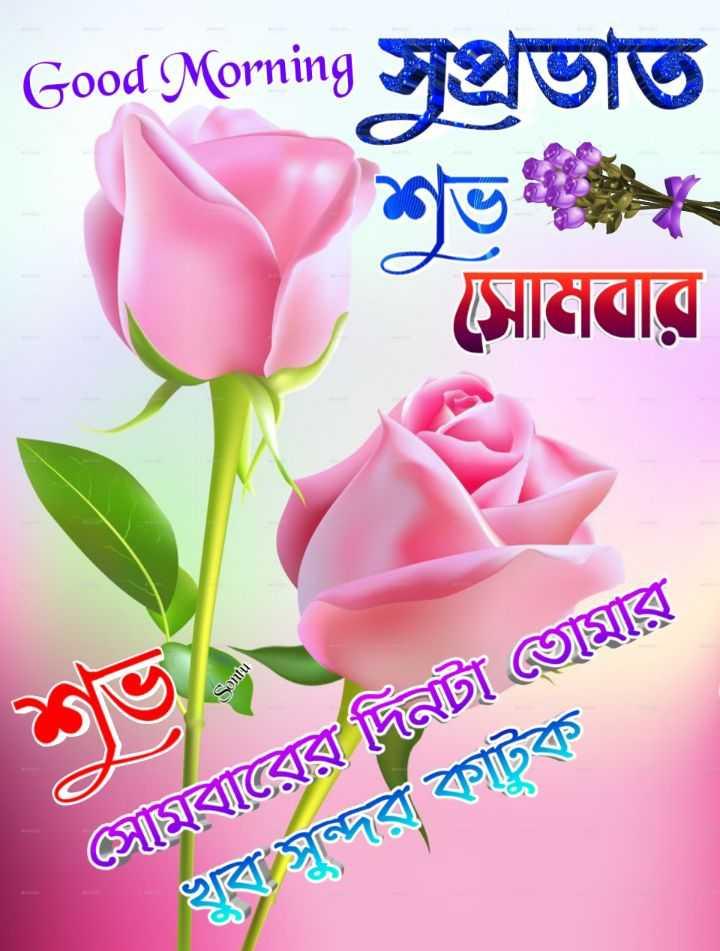 🌞সুপ্রভাত - Good Morning Jeluto সােমবার Sontu সােমবারের দিনটা তােমার খুব সঁন্দর কাট - ShareChat