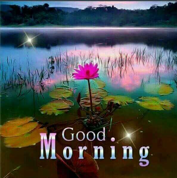 🌞সুপ্রভাত - Good . Morning - ShareChat