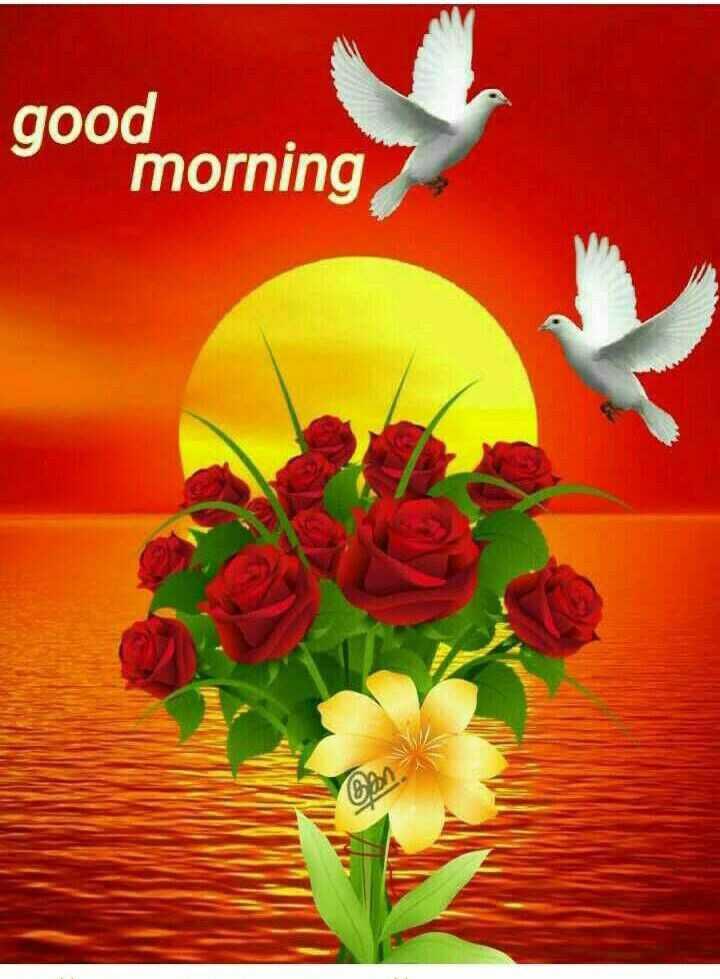 🌞সুপ্রভাত - good morning Can - ShareChat