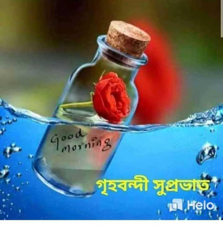 🌞সুপ্রভাত - ৭ : ains গৃহবন্দী সুপ্রভাত - ShareChat