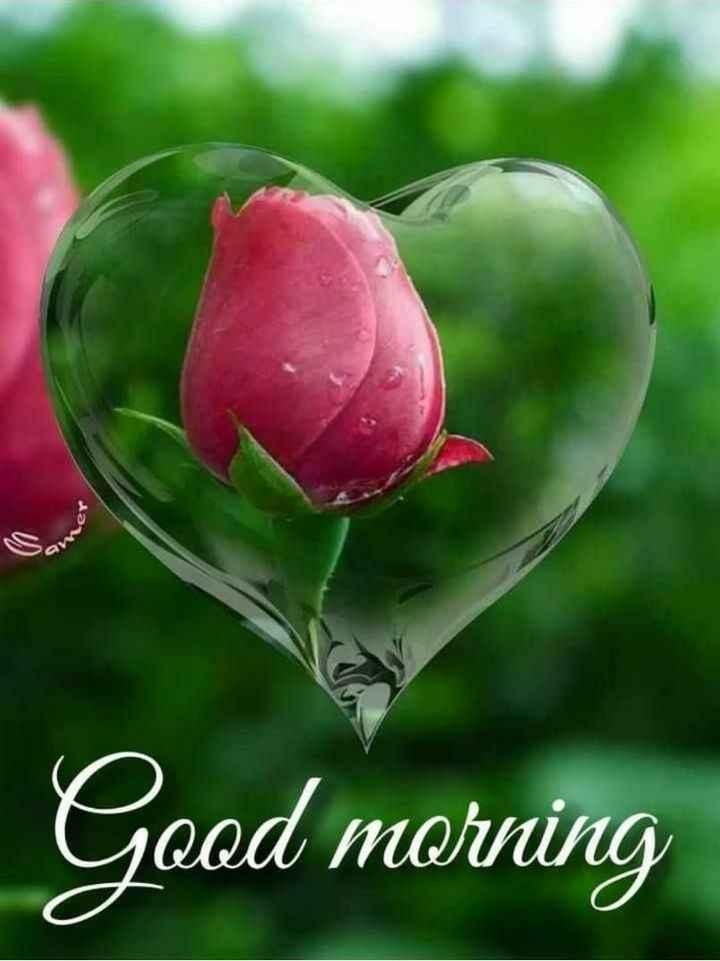 🌞সুপ্রভাত - ter Good morning - ShareChat