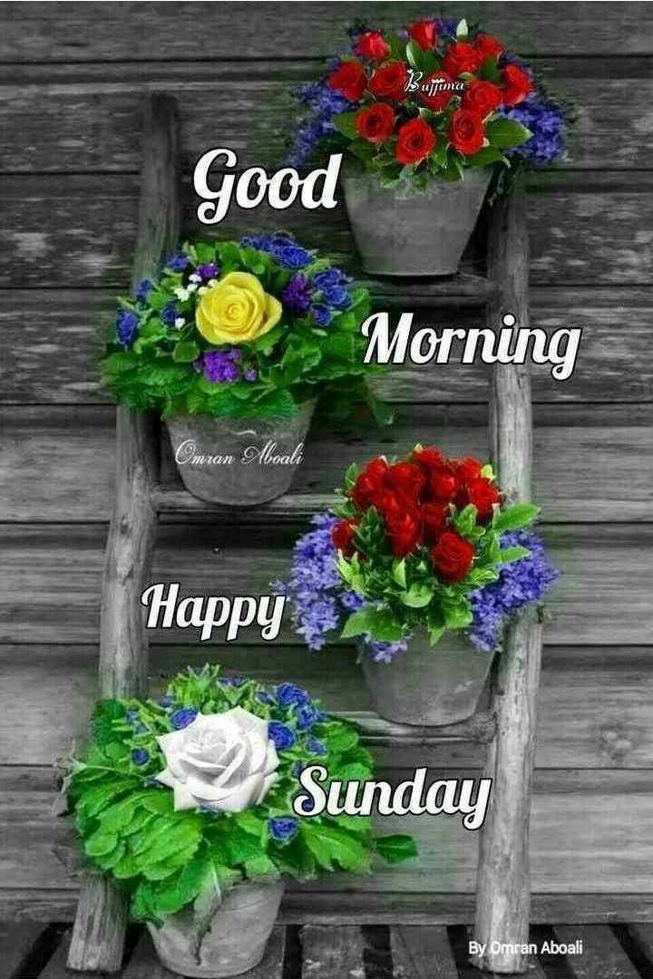🌞সুপ্রভাত - Good and - Morning Omran Aboali Happy Sunday By Omran Aboali - ShareChat