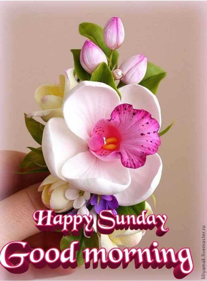 🌞সুপ্রভাত - Good morning Happy Sunday liliyamak . livemaster . ru - ShareChat