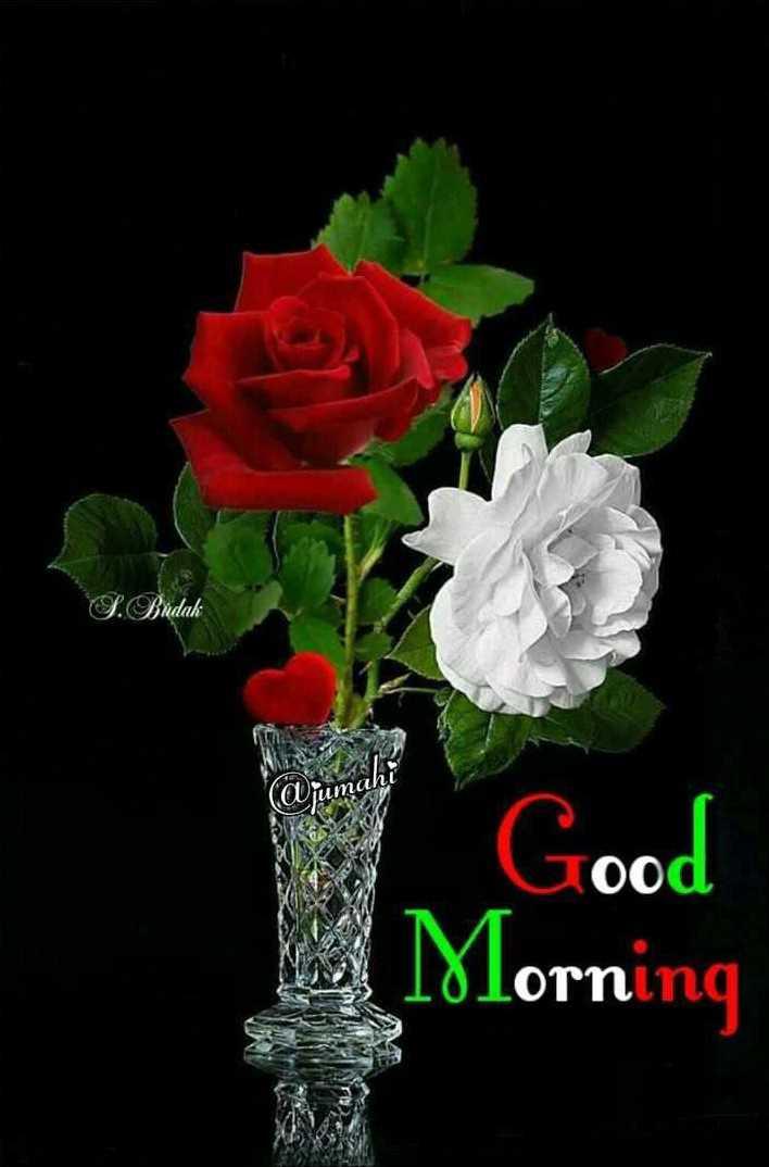 🌞সুপ্রভাত - L . Budak mahl Good Morning - ShareChat