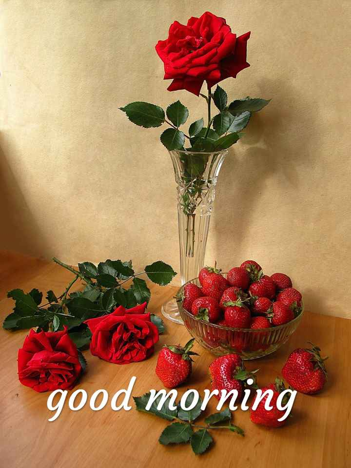 🌞সুপ্রভাত - Qor good morning - ShareChat