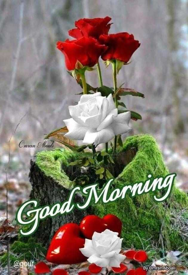🌞সুপ্রভাত - Omran Morali Good Morning @ gour By Omran Aboali - ShareChat