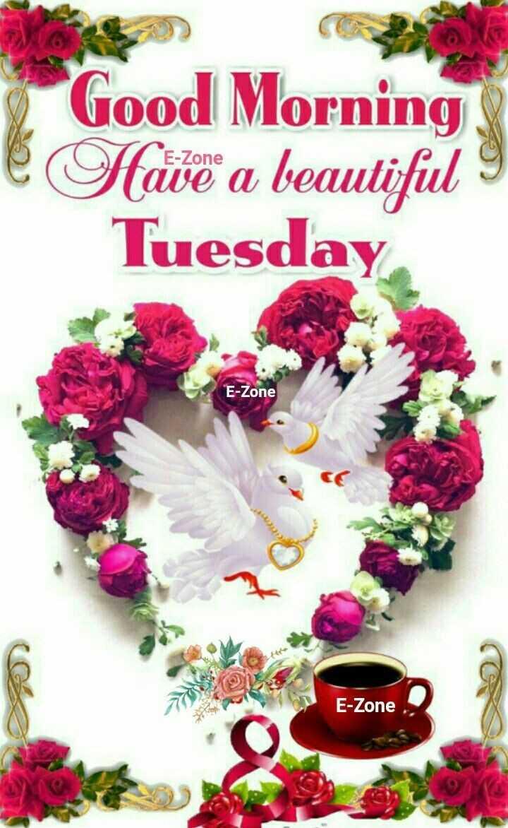 🌞সুপ্রভাত - e Good Morning Have a beautiful I Tuesday E - Zone E - Zone - ShareChat