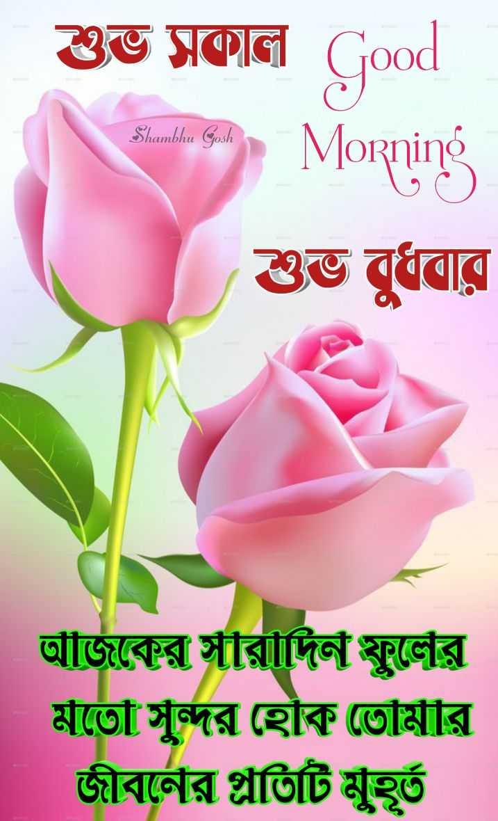 🌞সুপ্রভাত - শুভ সকাল Good Shambhu Gosh Morning শুভ বুধবার আঁজিকের সীরীদিন স্কুলের মতো সুন্দর হোক তোমার জীবর্নের গ্লাতিটি মুহূর্ত - ShareChat