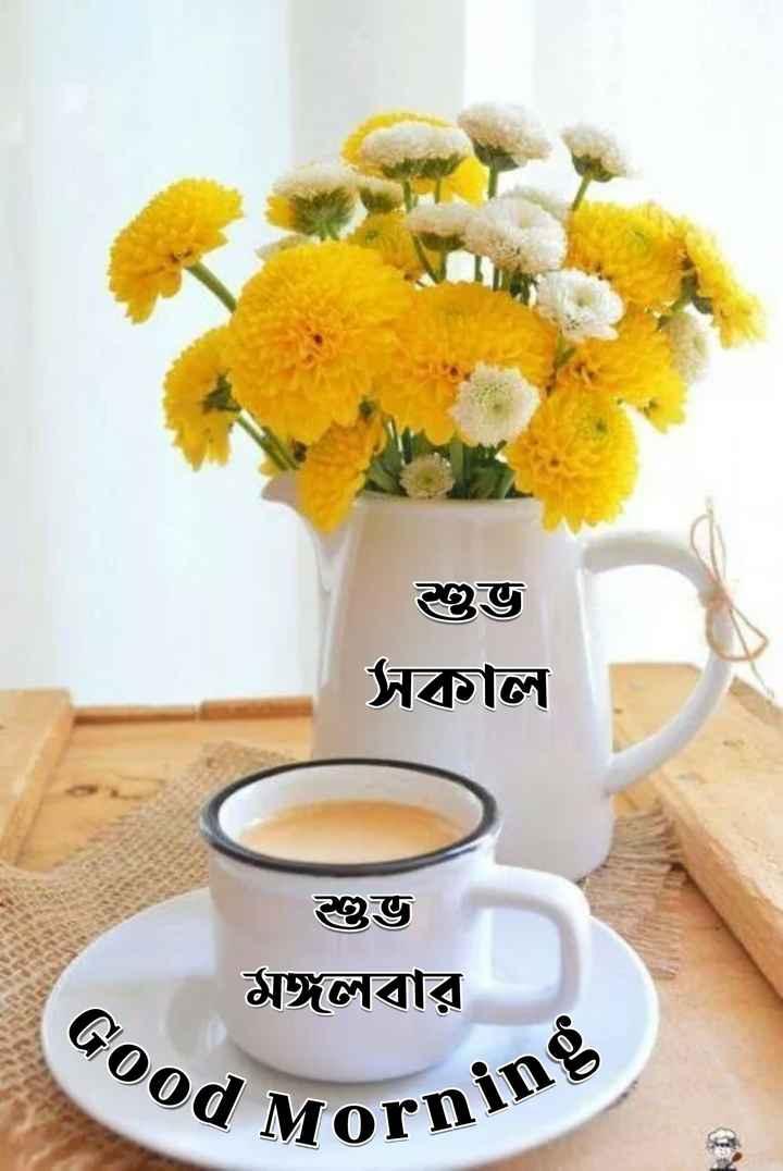 🌞সুপ্রভাত - শুভ সাল । শুভ মঙ্গলবার od Mornin - ShareChat