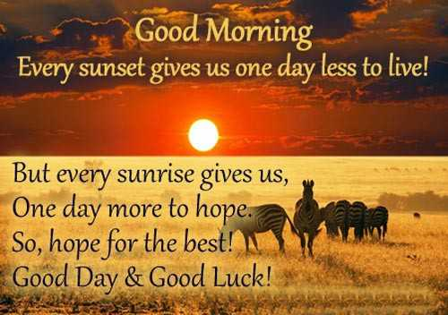 🌞সুপ্রভাত - Good Morning Every sunset gives us one day less to live ! But every sunrise gives us , One day more to hope . So , hope for the best ! Good Day & Good Luck ! - ShareChat