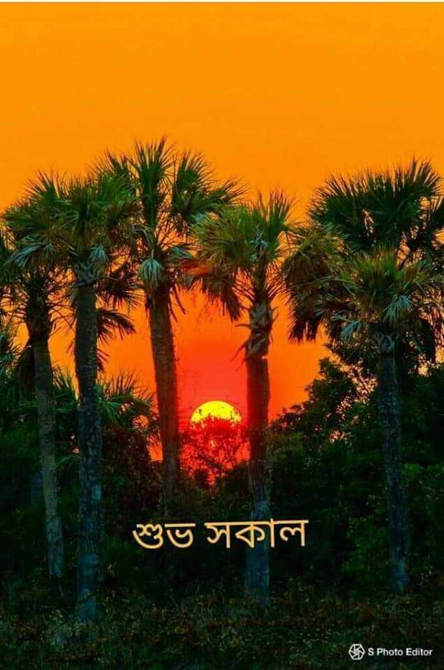 🌞সুপ্রভাত - শুভ সকাল S Photo Editor - ShareChat
