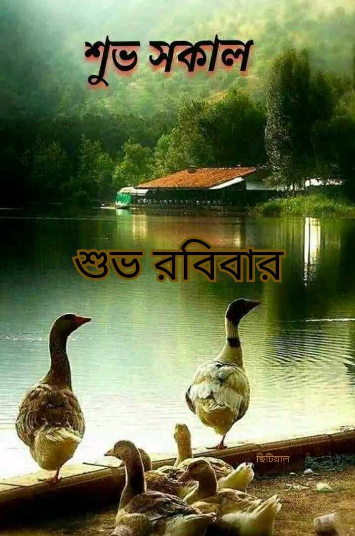 🌞সুপ্রভাত - শুভ সকাল শুভ রবিবার ছিটিয়াল - ShareChat