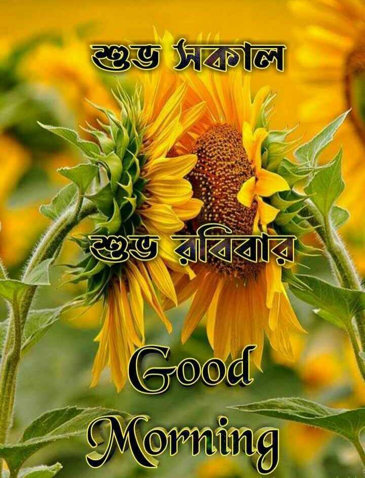 🌞সুপ্রভাত - শুভ দাল । শুভ রবিবার Good Morning - ShareChat