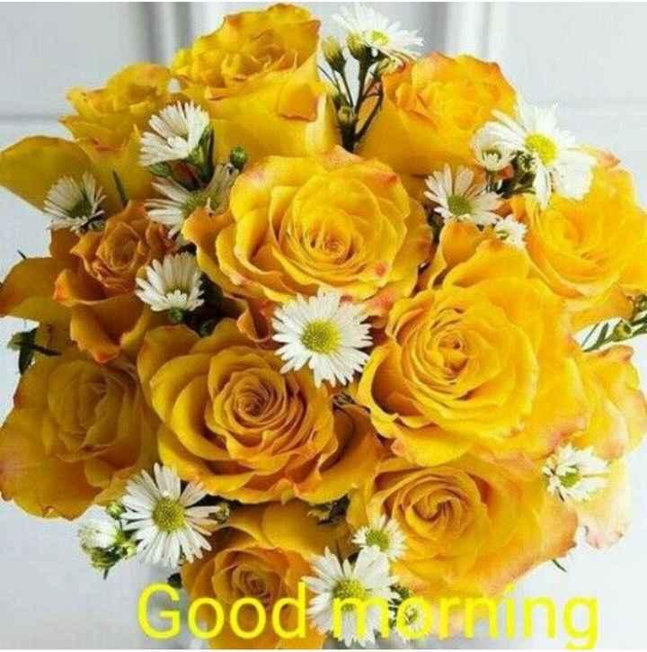 🌞সুপ্রভাত - ood morning - ShareChat