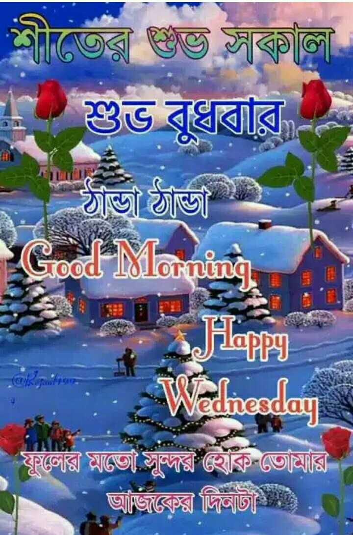 🌞সুপ্রভাত - শীতের গুপ্ত সুচালী শুভ বুধবার - ঠান্ডা ঠান্ডা Good Morning Happy Wednesday ফুলের মাজে সূর থাক তােমারি আজকের দিনটা - ShareChat