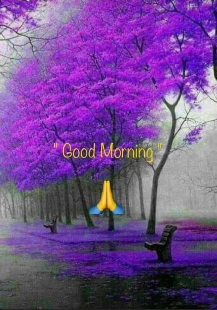 🌞সুপ্রভাত - Good Morning Good y - ShareChat
