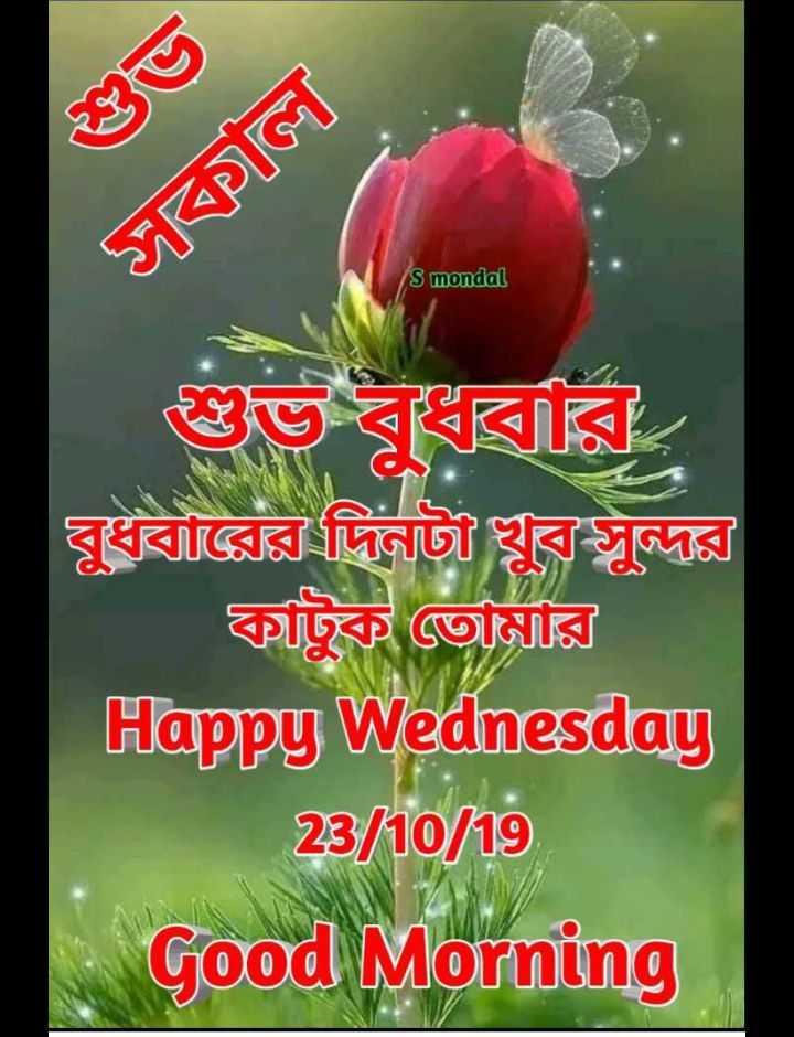 🌞সুপ্রভাত - ১সালে । S mondal দূধবারের দিনটা খুব সুন্দুর কাটুক তােমার Happy Wednesday 8 / 10 / 19 Good Morning - ShareChat