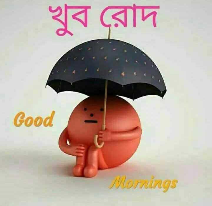 🌞সুপ্রভাত - খুব রােদ Good Mornings - ShareChat