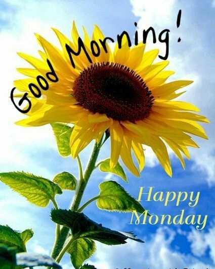🌞সুপ্রভাত - \ Morning ! Good Happy Monday - ShareChat