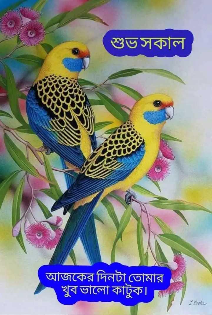 ★সুপ্রভাত★ - শুভ সকাল । আজকের দিনটা তােমার খুব ভালাে কাটুক । tonke - ShareChat