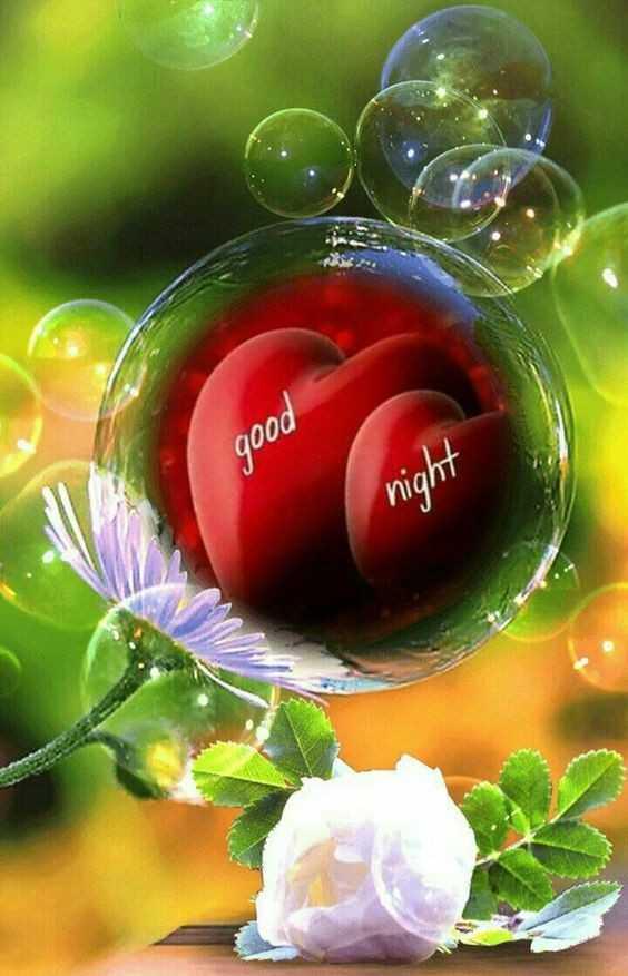 🌞সুপ্রভাত - good night - ShareChat