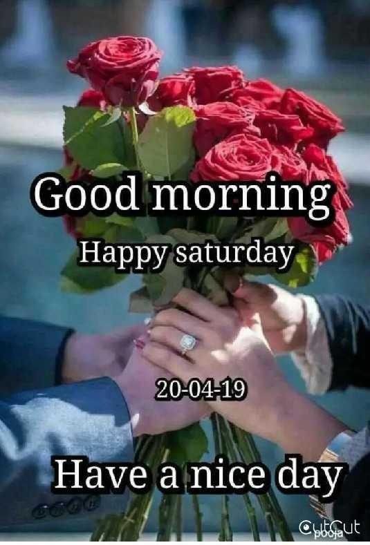 🌞সুপ্রভাত - Good morning Happy saturday 20 - 04 - 19 Have a nice day Obtes aut - ShareChat
