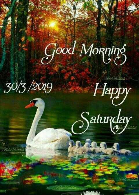 🌞সুপ্রভাত - Good Morning 30 / 3 / 2019 Happy Saturday So Wall Malale - ShareChat