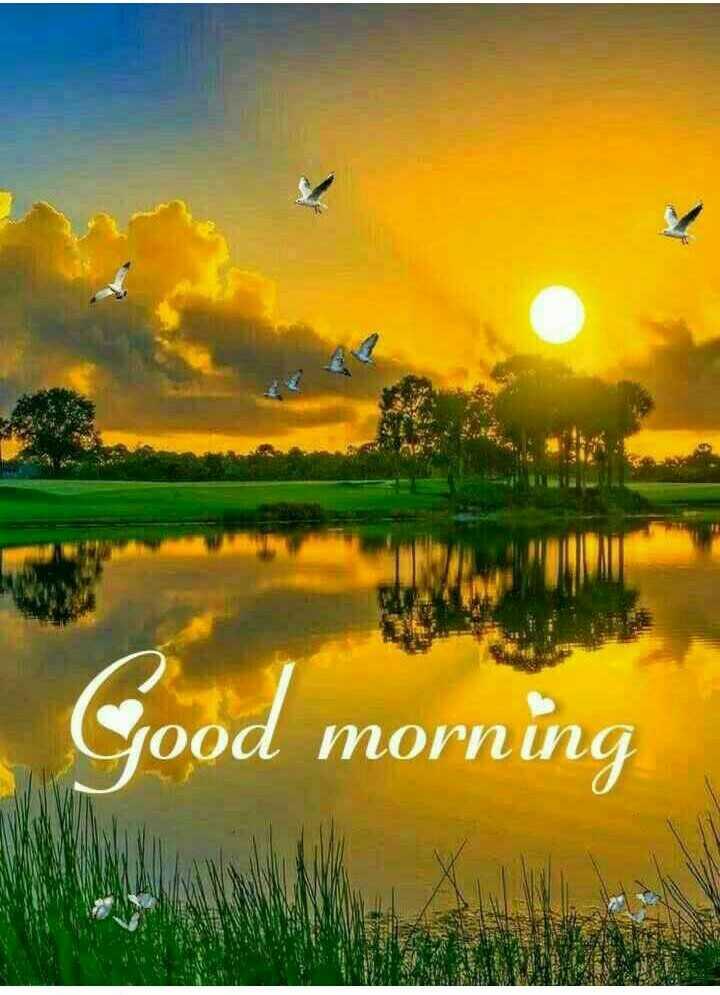 🌞সুপ্রভাত - Good morning ood morn - ShareChat
