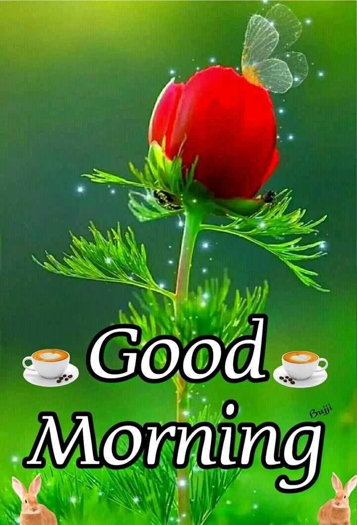 🌞সুপ্রভাত - Good Buji Morning - ShareChat