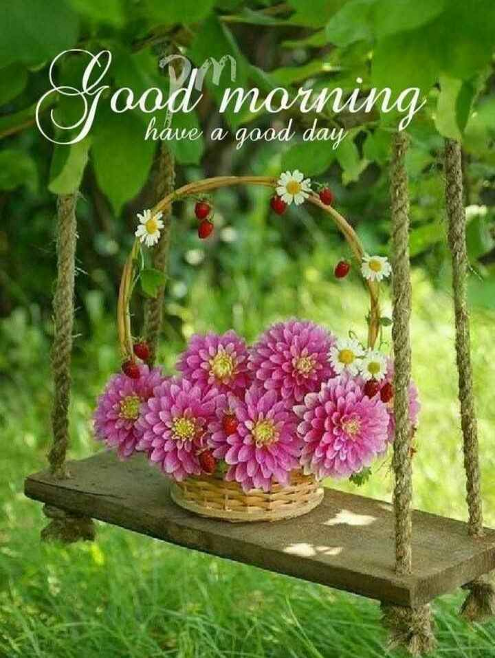 🌞সুপ্রভাত - road morning have a good day - ShareChat