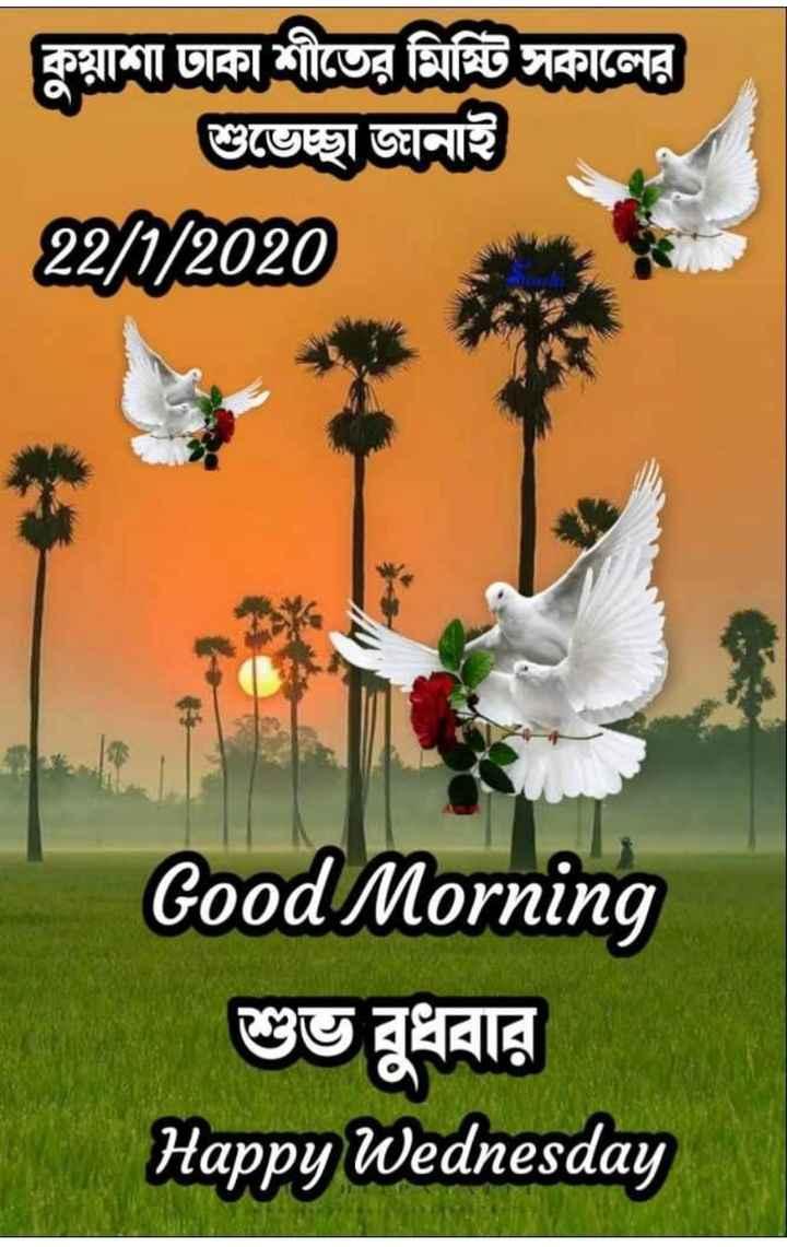 🌞সুপ্রভাত - কুয়াশা ঢাকা শীতের মিষ্টি সকালের শুভেচ্ছা জানাই 22 / 0 / 2020 Good Morning শুভ বুধবার Happy Wednesday - ShareChat