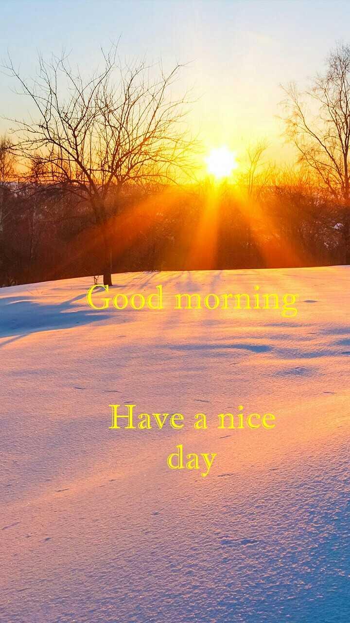 🌞সুপ্রভাত - pod mora Have a nice day - ShareChat