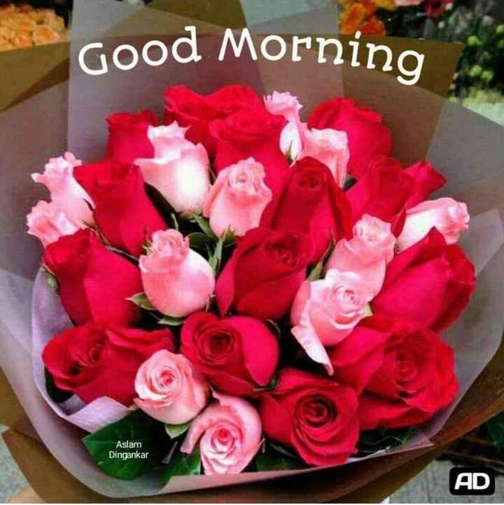 🌞সুপ্রভাত - Good Morning Aslam Dingankar AD - ShareChat
