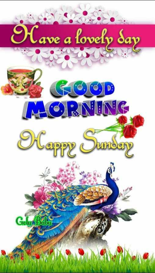 🌞সুপ্রভাত - | Have a lovely day MORNING Mappe Sunday Saabu - ShareChat