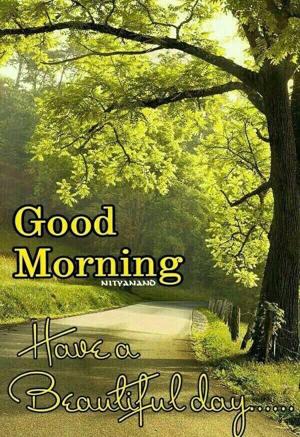 🌞সুপ্রভাত - Good Morning NITYANANO Have a Beautiful do - ShareChat